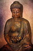Imagevixen Photography - Buddha