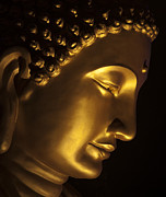 Meditation Photo Posters - Buddha taken at FGS Dong Zen Buddhist temple Poster by Zoe Ferrie