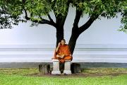 Cellphone Photo Prints - Buddhist monk sits under tree Print by Ray Laskowitz - Printscapes