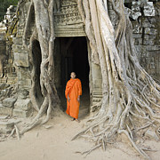 Religious Dress Framed Prints - Buddhist Monk Standing Next To Tree Roots Framed Print by Martin Puddy