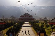 Flock Of Bird Art - Buddhist Temple In Dali China by Andrea Pistolesi