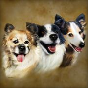 Dogs Digital Art Metal Prints - Buddies Metal Print by Barbara Hymer
