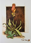 Garden Pyrography Originals - Budding Iris by Cynthia Adams