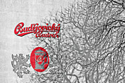 Beverage Prints - Budweis Czech Republic - 700 years of Brewing Tradition Print by Christine Till