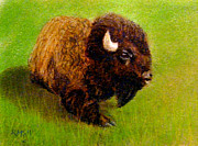 Old West Pastels Prints - Buffalo 1 Print by Richard Smith