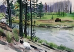 National Park Paintings - Buffalo in Yellowstone by Donald Maier