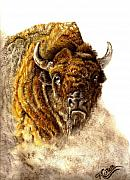 Bison Pastels - Buffalo by Karen Cortese