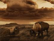 Bison Digital Art - Buffalo Prairie by Brad Robertson