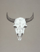 American Bison Drawings Prints - Buffalo Skull Print by Mick Gwin