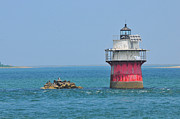 Plymouth Harbor Prints - Bug Light Print by Catherine Reusch  Daley