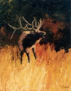 Bull Elk Posters - Bugle of the Monarch   Bull Elk Poster by Kim Corpany