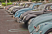 Volkswagen Photos - Bugs by Bill Dutting