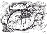 Bugs Drawings Prints - Bugs Print by Ramiliano Guerra