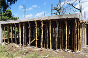 Bamboo House Photo Prints - Building Construction Print by David Nunuk