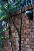 Linda Knorr Shafer - Building Walls
