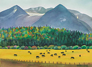 Anne Havard - Bulkley Valley Cows