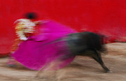 Bravery Prints - Bull Fighter - Mexico Print by Craig Lovell