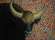 Ranch Framed Prints - Bull in a Plastic Shop Framed Print by James W Johnson