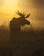 Moose Digital Art Metal Prints - Bull Moose in Fog- Abstract Metal Print by Tim Grams