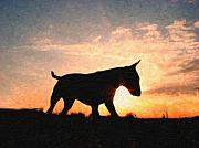Clouds Sunset Painting Prints - Bull Terrier at Sunset Print by Michael Tompsett