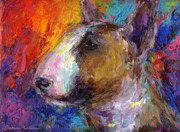 Textured Drawings Framed Prints - Bull Terrier Dog painting Framed Print by Svetlana Novikova