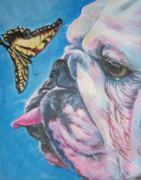 English Bulldog Paintings - Bulldog and butterfly by Lee Ann Shepard