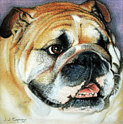 Unique Art Pastels Prints - Bulldog Head Portrait Print by Juan Jose Espinoza