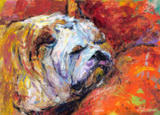 Sleeping Dog Drawings Prints - Bulldog Portrait painting impasto Print by Svetlana Novikova