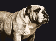 Animal Digital Art Prints - Bulldog Spirit Print by Michael Tompsett