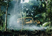 Destructive Prints - Bulldozing A Rainforest, Hawaii Print by G. Brad Lewis