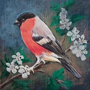 Red Finch Originals - Bullfinch by Karen Bradley