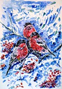 January Painting Prints - Bullfinches Print by Zaira Dzhaubaeva