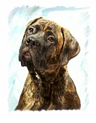 Bullmastiff Prints Metal Prints - Bullmastiff 301 Metal Print by Larry Matthews