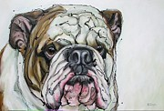 English Bulldog Paintings - Bullseyes by Erlinde Ufkes Stephanus