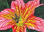 Bee Metal Prints - Bumble Bee Metal Print by Catherine G McElroy