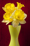 Wooden Prints - Bunch Of Daffodils Print by Garry Gay