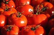 Reflection Harvest Metal Prints - Bunch of Tomatoes Metal Print by Connie Cooper-Edwards