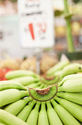 Groceries Framed Prints - Bunches Green Bananas in a Market Framed Print by Jetta Productions, Inc