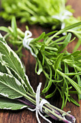 Tie Posters - Bunches of fresh herbs Poster by Elena Elisseeva