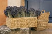 Baskets Photos - Bundles Of Lavender Sit In A Basket by Nicole Duplaix