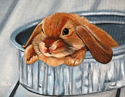 Rabbit Pastels Posters - Bunny In A Bucket Poster by Stephanie L Carr