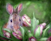Wildlife Art Mixed Media Posters - Bunny In The Tulips Poster by Carol Cavalaris