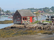Gordon H Rohrbaugh Jr - Buoy Shed on Baily Island