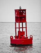 Donny Metal Prints - Buoy Two Metal Print by Donni Mac