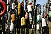 Buoys Prints - Buoys Print by David Lee Thompson
