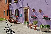 Italy Village Framed Prints - Burano Italy Courtyard Framed Print by John Gilroy