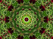 Renata Ratajczyk Prints - Burgundy and Green Mandala - 1 Print by Renata Ratajczyk