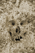 Brown Toned Art Digital Art Posters - Buried Skull Poster by Dave Gordon