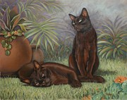 Felines Tapestries Textiles - Burmese Beauty by Cynthia House
