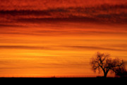Sunset Greeting Cards Posters - Burning Country Sky Poster by James Bo Insogna